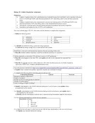 cellular respiration and photosynthesis worksheet delibertad comparing photosynthesis and cellular respiration worksheet