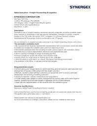 International Sales Representative Sample Resume Jewelry Sales Representative Resume Dadajius 17
