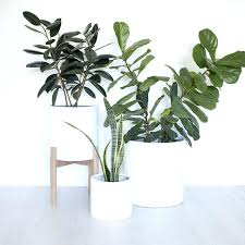 modern pots for indoor plants nature house white indoor plant pots modern pots for indoor plants