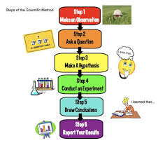Example Of A Flow Chart Observation Inventions The Scientific Method Teachers Science Trek