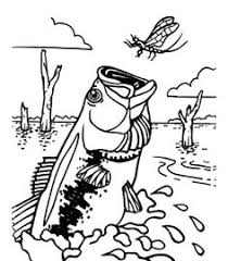 bass fish coloring pages. Brilliant Coloring BassFishCatchingDragonflyColoringPagesjpg 600 On Bass Fish Coloring Pages R