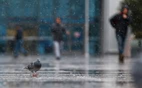 Meteoroloji'den yağmur ve fırtına uyarısı! 29 Kasım hava durumu raporu