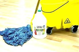 best mop for laminate floors dry mops steam cleaner can you use wet cloths on shark
