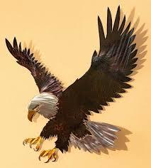 5600041533 i majestic bald eagle