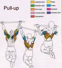Pull Up Workout Chart Pullups Archives Armstrong Pullup Program