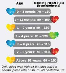 Normal Resting Heart Rate Chart Child Best Picture Of