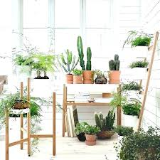 awesome indoor plant holder pot stand like thi item metal wizrd me flower shelf best of mesmerizing uk for window nz ikea indium wall wooden