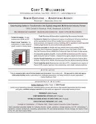 Sales Marketing Cv Senior Sales Marketing Executive Resume Example Essaymafia Com