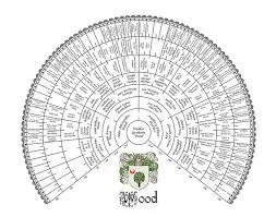 Excel Fan Chart Eight Generation Genealogy Fan Chart Family Tree Family