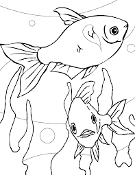 tetra animal coloring pages