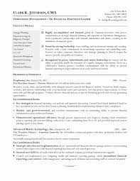 23 Creative Sample Resumes For Accountants And Financial