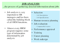 17 best ideas about job analysis human resources job analysis is very selection important to