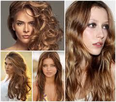 Hair Color Light Brown Sugar Formulas