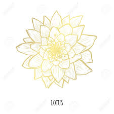 Decorative Lotus Flower Design Element Can Be Used For Cards