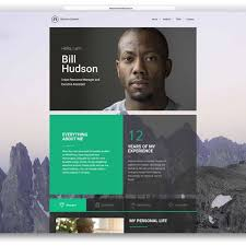 Best Resume Website Examples Sample Online Resume Website Resume