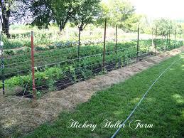 Kitchen Garden Farm Hickery Holler Farm No Till Gardening And Heavy Mulch