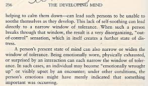 info on windows of emotional tolerance stop the storm