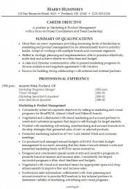 college student resume example sample example of a resume summary example of a summary for a resume