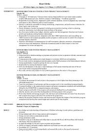 Pmp Resume Sample Senior Project Management Resume Samples Velvet Jobs 17