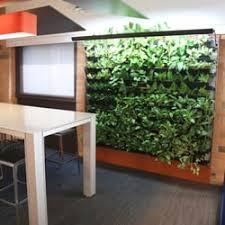 greenery office interiors. Photo Of Greenery Office Interiors - Calgary, AB, Canada. Breathwall Living Wall Project R
