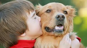 why dogs bite kids pet health