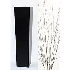 GreenFloralCrafts Natural Beech Branches in Large Tapered Black Floor Vase  - 30 in.H x