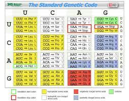 Universal Genetic Code Chart Genetic Code Chart Science Biology Genetics Biology