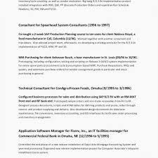 Great Cio Resumes Archives Sierra 31 Good Cio Resume Examples On