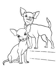 Chihuahua Coloring Pages For S Coloring Pages