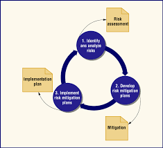 Process Steps Steps And Outcomes In The Risk Management Process Circles Are