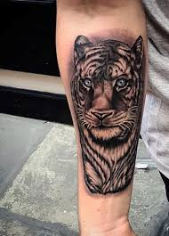 tiger roar tattoo. Interesting Tattoo Guyu0027s Roaring Tiger Tattoo On Forearm Intended Roar G