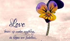 Quotes From The Bible Impressive What Is Love Quotes From The Bible Feat Tagged Inspirational Love