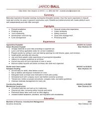 Apprentice Drywaller Resume Sample