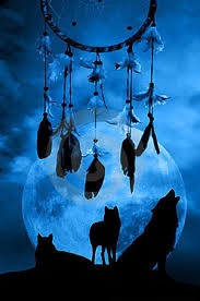 native american dreamcatcher wallpaper. Fine Native Cool Picture Of A Dreamcatcher And Wolves In The Background Very Pretty  DreamcatchersAmerican IndiansNative  With Native American Dreamcatcher Wallpaper E