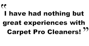 Customer Reviews Morrisville Carpet Cleaning