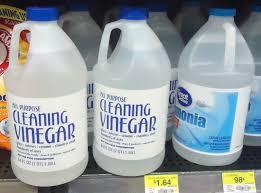cleaning vinegar on store shelf
