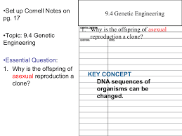 genetic engineering essay genetic engineering genetic disorders  genetic engineering