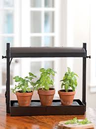 Small Fluorescent Grow Light System Displayed On A Counter With Three Pots  Of Herbs Gardener\u0027s Supply