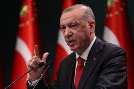 أردوغان: النظام الذي لا يُعاقب المجرم والمسيء لا يمكن أن نصفه نظاما حرا -  CNN Arabic