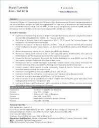 Sap Abap Sample Resume 3 Years Experience Resume Layout Com
