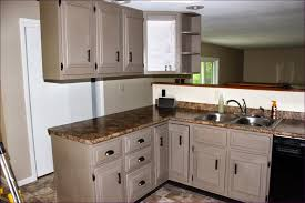 what type of paint for kitchen cabinetsKitchen Room  Wonderful Painting Cupboards White Best Way To