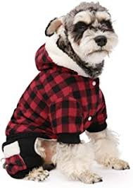 Dog Winter Clothes - Amazon.ca