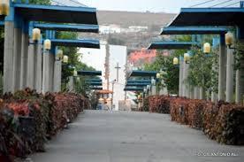 El parque de San Juan estrena cafetería | Economía | TELDEACTUALIDAD