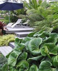 Small Picture 18 best Garden ideas images on Pinterest
