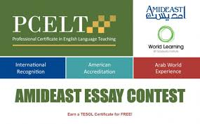 essay contest amideast