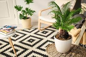 10 simple eco friendly home decor tips