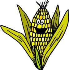 Resultado de imagem para gifs animados milho