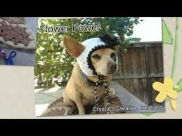 Crochet Dog Hat Pattern Fascinating Crochet Dog Hats YouTube