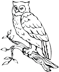 Printable Baby Owl Coloring Pages Coloring Pages Owls Owl Coloring