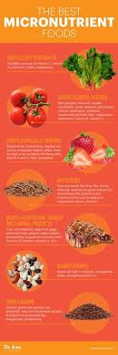 micronutrients foods chart luxury 371 best micro nutrients vitamininerals images on of micronutrients